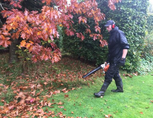 autumn leaf blowing and clearing - grounds mainatenance