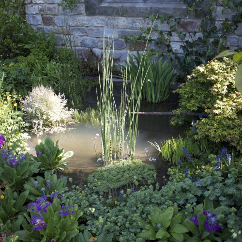 natural garden pond installation