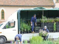 Plant supply and delivery for garden designers