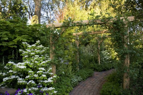 Oak Pergola Garden arches climbing roses over path