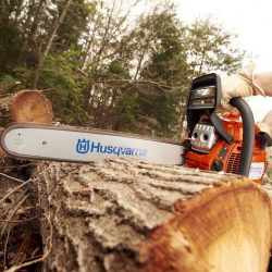 Chainsaws and Tree Care