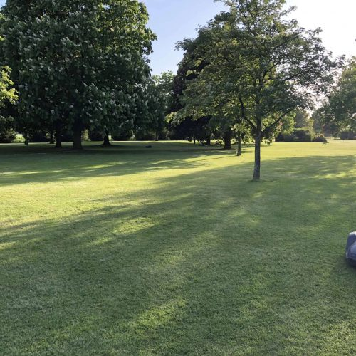 robotic-mower-installation-in-ashford