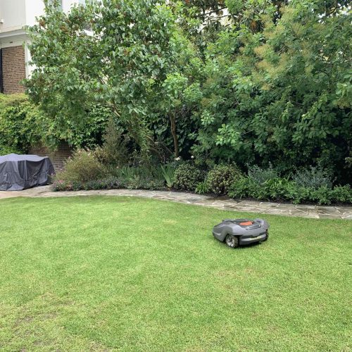 robotic-mower-installation-in-london